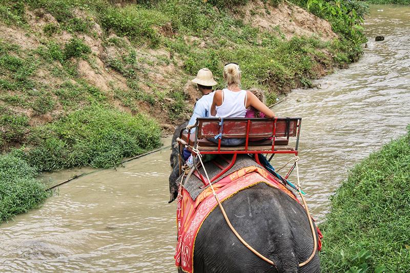 Upoznavanje sa životinjama na Tajlandu